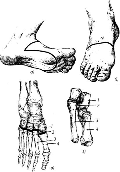 клиника костно-суставная детская